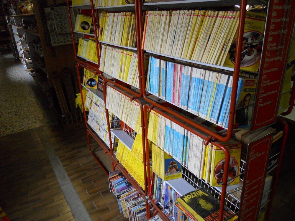 Libri-gialli-e-romanzi-by-Mercatino-la-Pulce-Cocquio